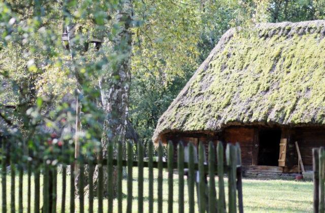 Muzeum Wsi Opolskiej Bierkowice - Wieś opolska