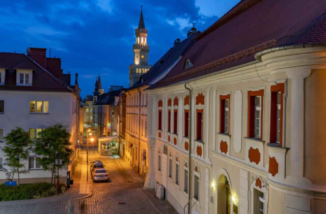 muzeum śląska opolskiego