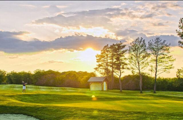 Pole golfowe Kamień Śląski
