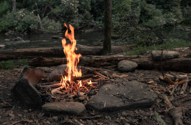 ognisko - kolacja degustacyjna